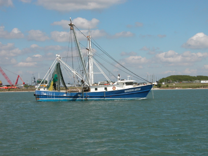 Free high quality photos of commercial fishing photos for Commercial fishing florida