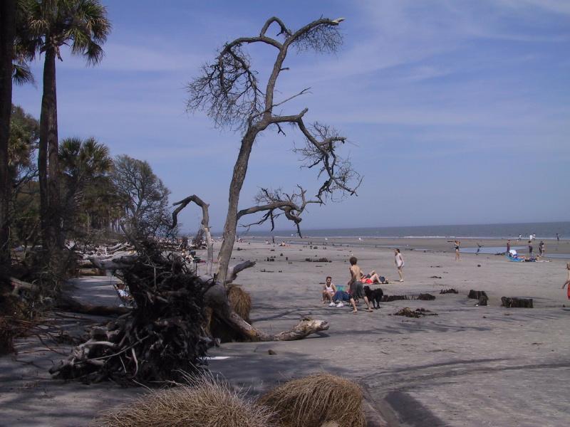Beach Near Savannah Georgia Us